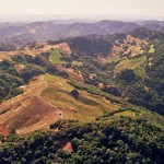 Aerial photo of Cain Vineyard