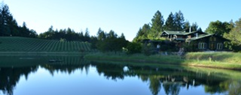 cropped pond